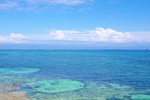 沖縄の海はなぜきれい?