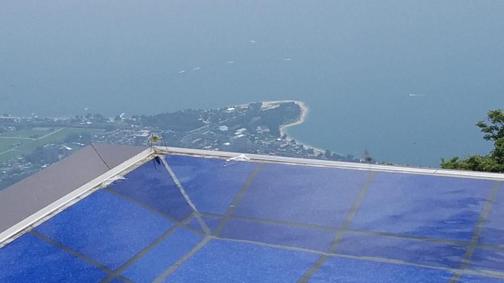 琵琶湖テラスのバッタ