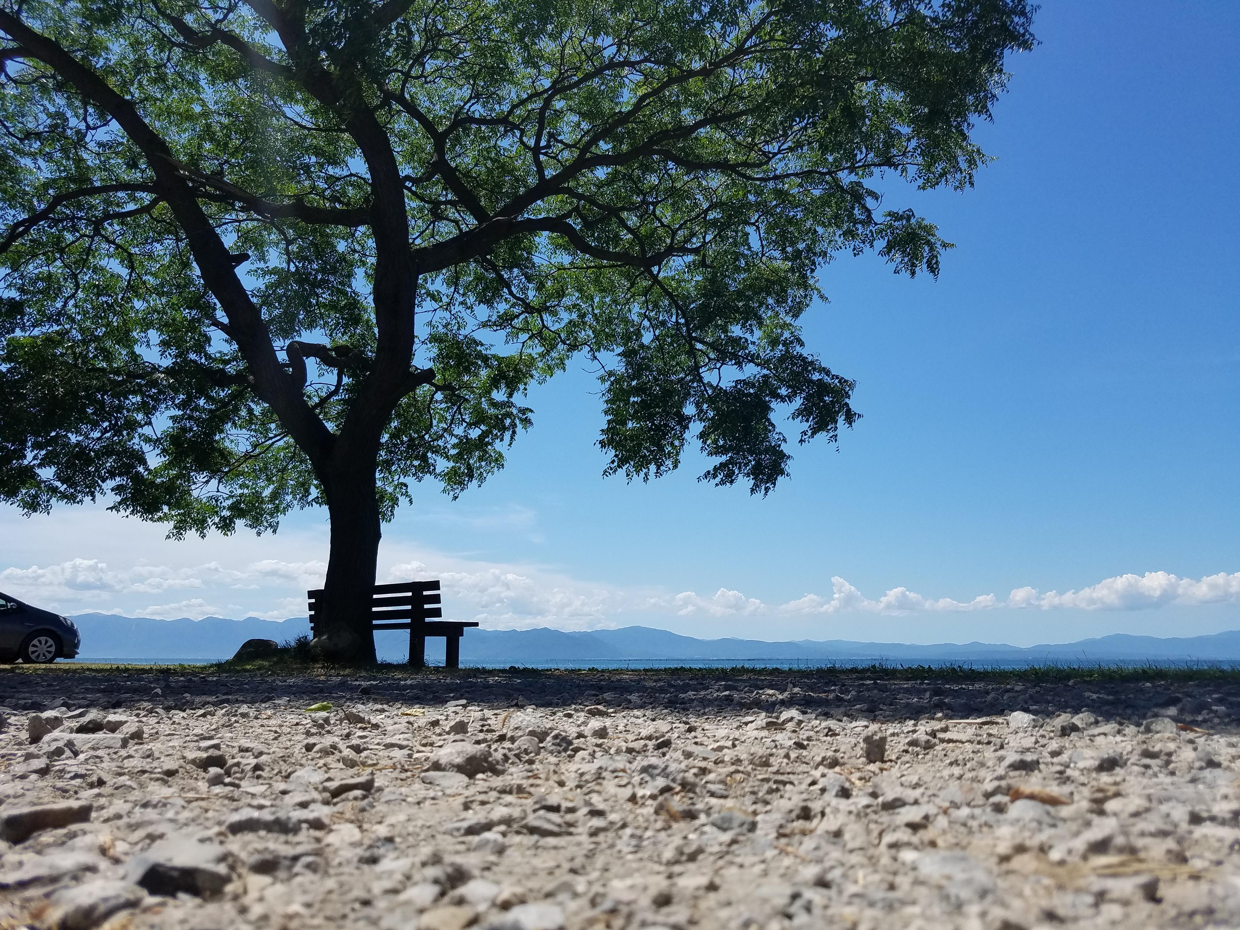 滋賀の琵琶湖にあるあのベンチの場所を公開!行ってきました!